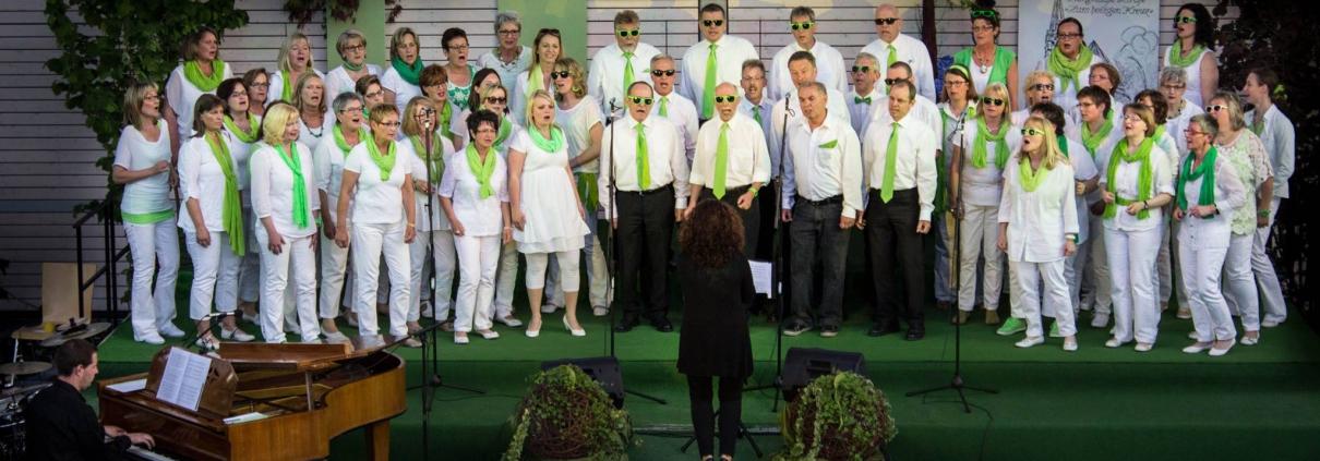 Chorart zwanzigelf beim Festival der jungen Chöre 2014